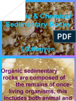 Organic and Chemical Sedimentary Rocks