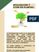 Nutrición en Plantas 10