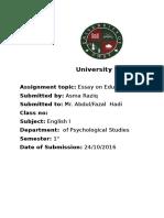 Essay on education.docx