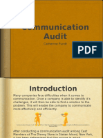 pundt communication audit
