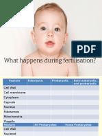 L3 Fertilisation
