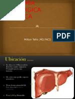 1. Anatomía Quirúrgica Hepática