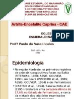 Artrite Encefalite Caprina