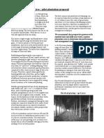 Kiri Tree- Pilot Plantation Proposal