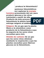 Cómo se produce la fotosíntesis.docx