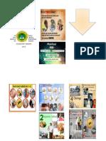 Print Warna Leaflet PHBS SDN 04moramo Utara
