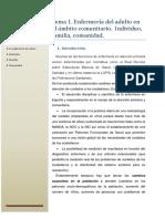 Tema 1. Enfermería Del Adulto en El Ámbito Comunitario