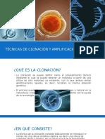 Técnicas de Clonación y Amplificación Del ADN