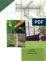 Perangkat Pembelajaran Gerak Pada Tumbuhan