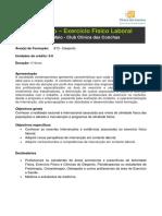 201401131517-Programa de Formacao Exercicio Fisico Laboral