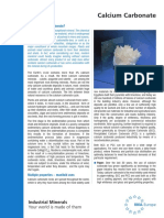 Calcium_Carbonate - an overview.pdf