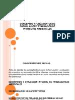 Proyectos teoria general.pdf