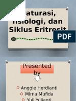 hematologi eritropoesis 3