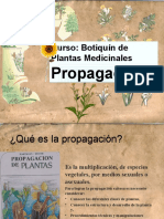 Plantas Medicinales Final