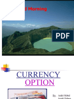 Currency_Option_(FINAL)