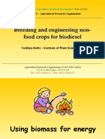 Breeding and Engineering Non-food Crops for Biodiesel