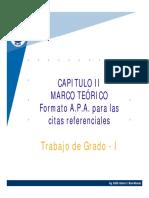 62252431-Capitulo-II-Marco-Teorico-CITAS.pdf