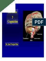 Cerebelo y Cognicion
