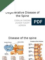 Anatomy Spine