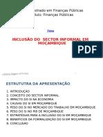 Sector Informal (Inclusão Slides)