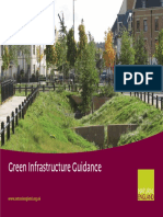 Green Infrastructure Guidance