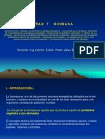 Cap 7 Biomasa