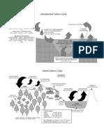 Carbon-fig.pdf