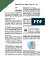 apostila_-_atualidades_-_2012 2013.pdf