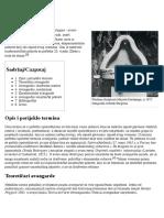 Avangarda - Wikipedia, slobodna enciklopedija.pdf