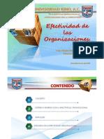 Efectividad en Las Organizaciones