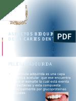 Aspectos Bq de La Caries Dental