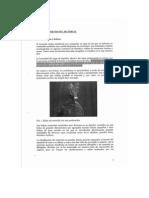 Informe de Ms Arqueo, Estado Previo Del Material
