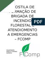 APOSTILA DE FORMAÇÃO DE BRIGADA DE INCENDIO FLORESTAL E ATENDIOMENTO A EMERGENCIAS.doc