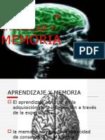 aprendizajeymemoria-100605183815-phpapp01