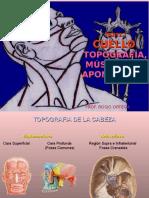 Cuello Parte I, Triángulos, Aponeurosis y Musculos (1)
