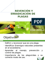 Huerta Familiar Prevencion y Erradicacion de Plagas