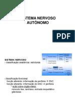 Sistema Nervoso Autônomo (1)