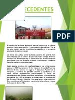 Diapositivas Lomas de Lachay - Jimmy Salas