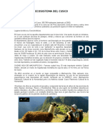 Ecosistema Del Cusco