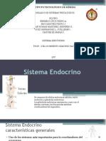 Sistema Endocrino Corregido