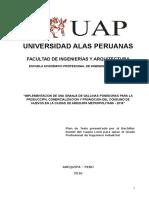 Plan de Tesis SAM (CURSO).doc