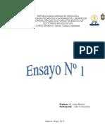 EnsayoNro1