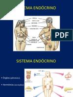 Aula IX - Endócrino