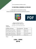 Informe N°2 - SEMILLACosechayestructura