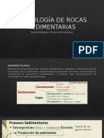 Glauconita, Peloides y Fósiles