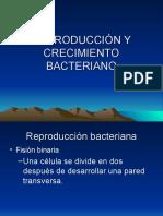 CLASE 3 Crecimiento_Bacteriano