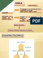 Esquema Tricómico Clase Modelo