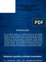 presentacion_expo_fisio.pptx;filename-= UTF-8__presentacion expo fisio