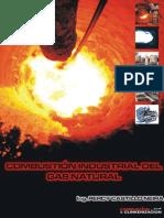 COMBUSTIÓN INDUSTRIAL DEL GAS NATURAL.pdf