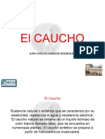 El_Caucho